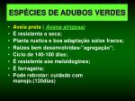 esp cies de adubos verdes7