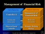 management of financial risk