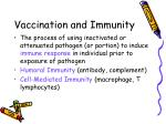 vaccination and immunity
