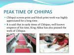 peak time of chhipas