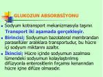 glukozun absorbs yonu