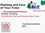 planting and care of your trees