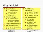 why mulch