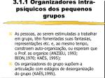 3 1 1 organizadores intra ps quicos dos pequenos grupos