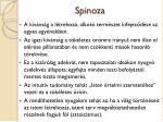spinoza5