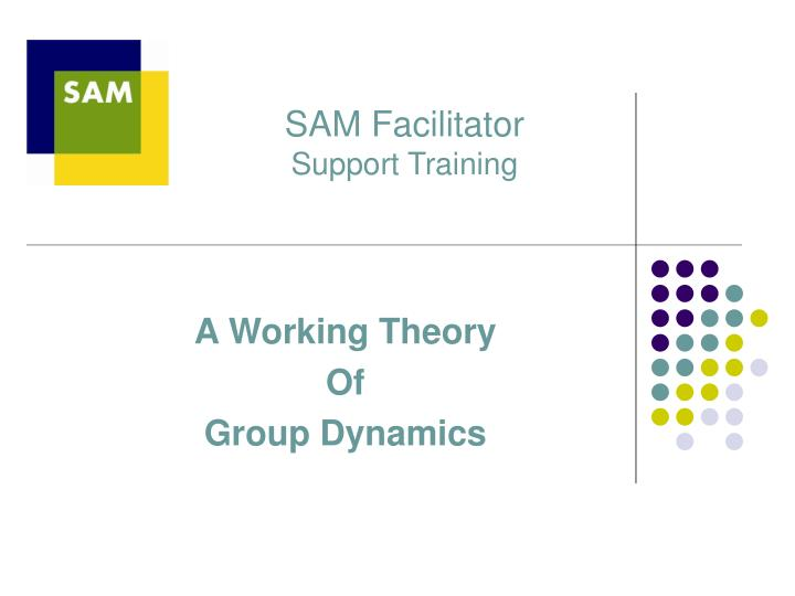 sam facilitator support training n.