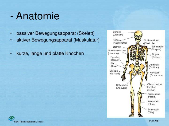 PPT - Traumatologie I Allgemeine Traumatologie PowerPoint ...