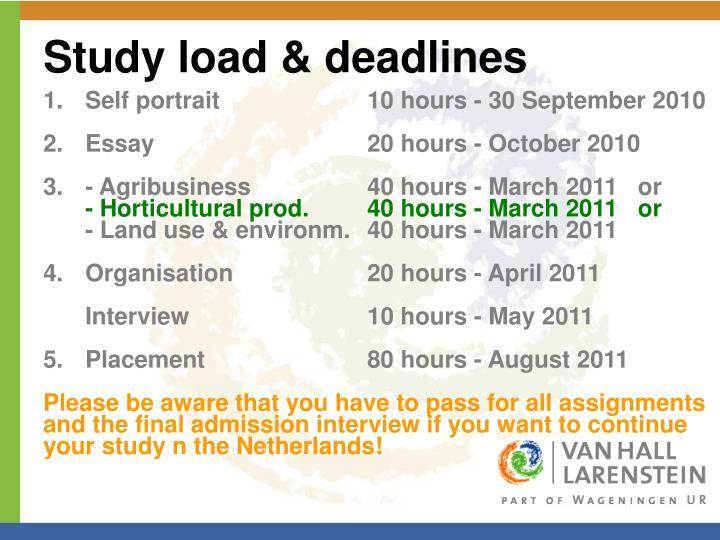 Study load & deadlines