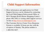 child support information