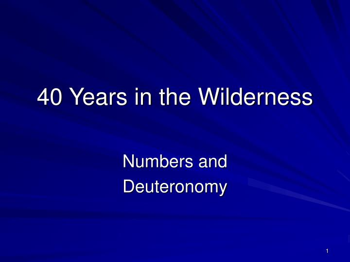 40 years in the wilderness n.