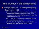 why wander in the wilderness3