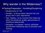 why wander in the wilderness4