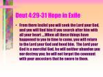 deut 4 29 31 hope in exile