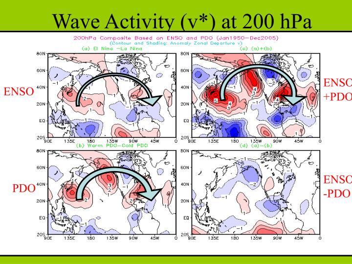 Wave Activity (v*) at 200 hPa