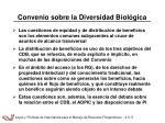 convenio sobre la diversidad biol gica