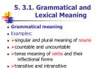 5 3 1 grammatical and lexical meaning