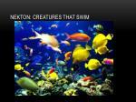 nekton creatures that swim
