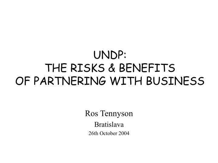 undp the risks benefits of partnering with business n.