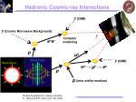 hadronic cosmic ray interactions