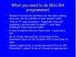 what you need to do bsc ba programmes