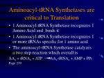 aminoacyl trna synthetases are critical to translation
