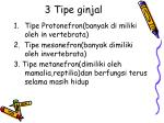 3 tipe ginjal