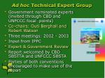 ad hoc technical expert group