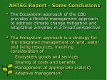 ahteg report some conclusions