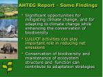 ahteg report some findings