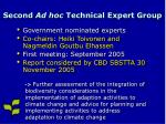 second ad hoc technical expert group