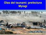 olas del tsunami prefectura myiagi