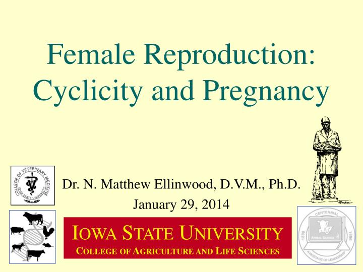 female reproduction cyclicity and pregnancy n.