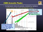 cmb acoustic peaks