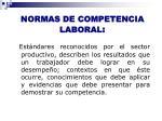 normas de competencia laboral