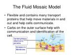 the fluid mosaic model