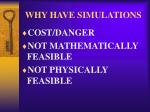 why have simulations