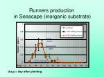 runners production in seascape inorganic substrate