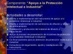 componente apoyo a la protecci n intelectual e industrial1