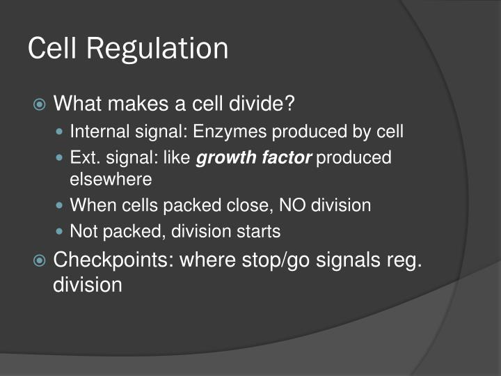 Cell Regulation