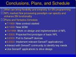 conclusions plans and schedule