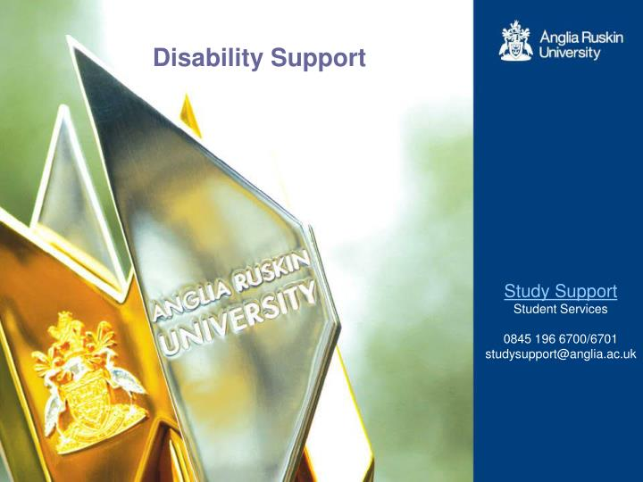 disability support n.