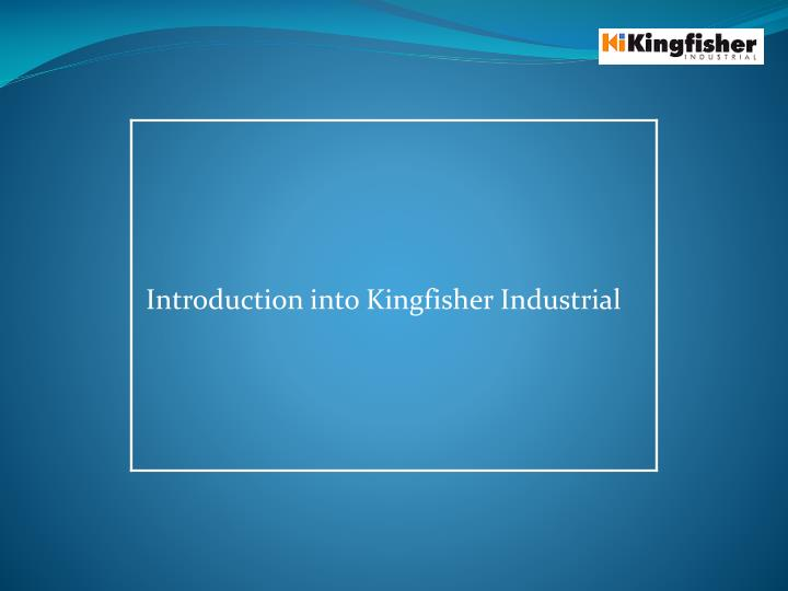 introduction into kingfisher industrial n.