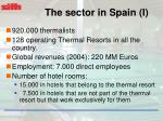 the sector in spain i