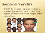 segmentaci n demogr fica