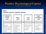 positive psychological capital luthans luthans luthans 2004