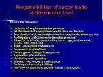 responsibilities of sector leads at the country level