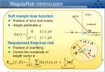 regularisk minimization
