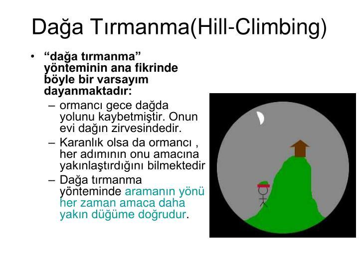 Dağa Tırmanma(