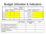 budget utilization indicators