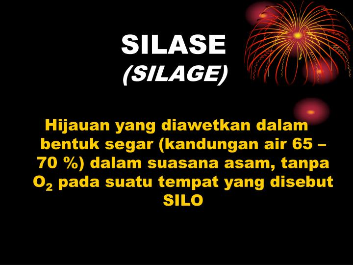 silase silage n.